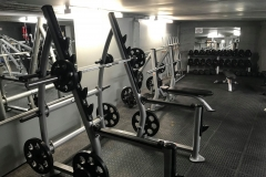 free-weights-area